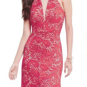Coral Lace + Nude Bodycon Dress